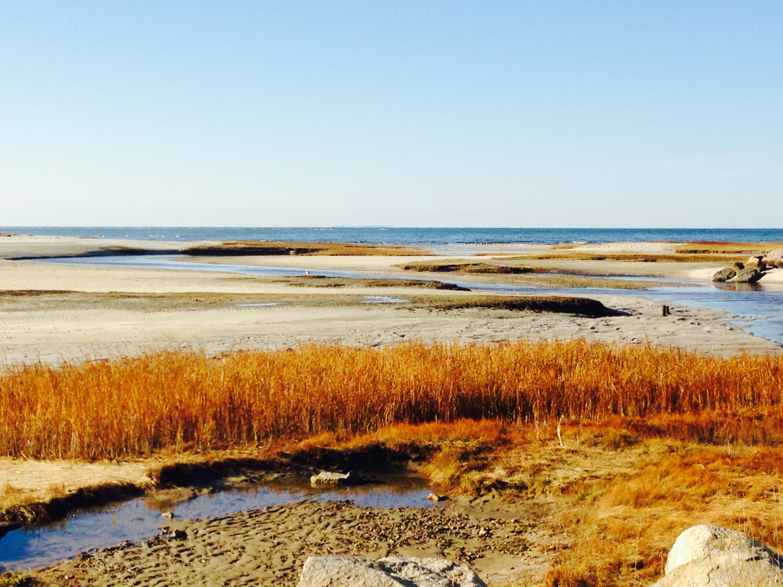 Cape Cod at Thanksgiving