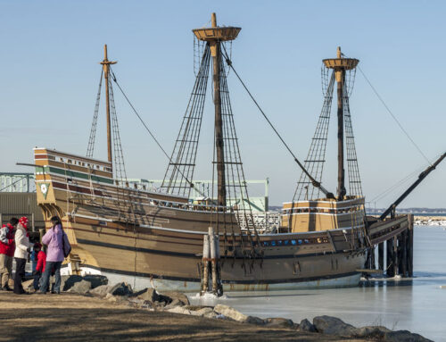 Our Mayflower Ancestors